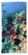 Coral Reef  Hand Towel