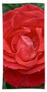 Coral Rose At Pilgrim Place In Claremont-california Bath Towel