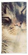 Cute Small Cat Portrait Bath Towel