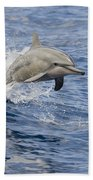 Dolphins Leaping Bath Towel