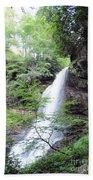 Dry Falls Bath Towel