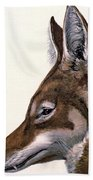 Ethiopian Wolf, Endangered Species Bath Towel