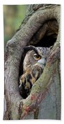 Eurasian Eagle-owl Bubo Bubo Looking Bath Towel