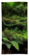 Ferns Of The Forest Bath Towel