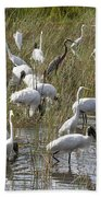 Flock Of Different Types Of Wading Birds Bath Towel