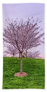 Flowering Young Cherry Trees On A Green Hill In The Park  Hand Towel