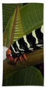 Frangipani Tree And Caterpillar Bath Towel