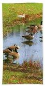 Geese Lake Fall  Bath Towel