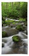 Great Smoky Mountains Roaring Fork Bath Towel