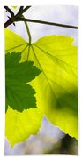 Green Leaves Hand Towel