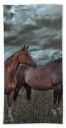 Hanoverians Bath Towel