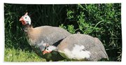 Helmeted Guineafowl Bath Towel