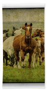 Horses 27 Bath Towel