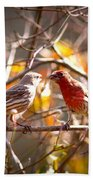 Img_0001 - House Finch Bath Towel