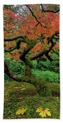Japanese Maple Tree In Autumn Hand Towel