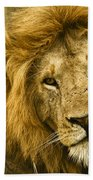 King Of The Savanna Bath Towel