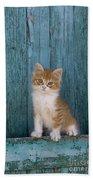 Kitten On A Greek Island Bath Towel