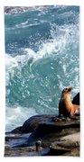 La Jolla Cove Bath Towel