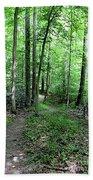 Lakeside Trail Winding Path - Yellowwood Lake Bath Towel