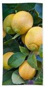 Lemon Tree Bath Towel