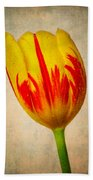 Lovely Textured Tulip Hand Towel