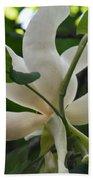Magnolia Macrophylla Bath Towel
