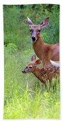 Maine White Tailed Deer Bath Towel