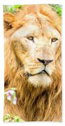 Majestic Lion Bath Towel