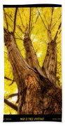 Maple Tree Portrait 2 Bath Towel