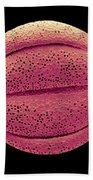 Monarda Didyma Pollen Grains, Sem Bath Towel