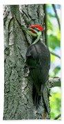 Mr. Pileated Woodpecker Bath Towel
