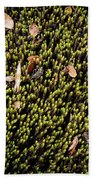 Nature Detail Bath Towel