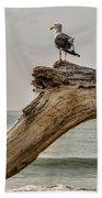 Gull On Driftwood Bath Towel