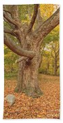 Odiorne Point State Park - Rye New Hampshire Bath Towel