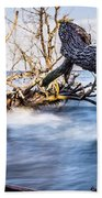 Old Dead Trees On Shores Of Edisto Beach Coast Near Botany Bay P Bath Towel