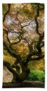 Old Japanese Maple Tree Hand Towel