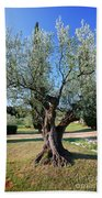 Olive Tree Bath Towel