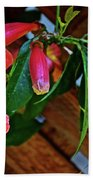 Orange Trumpet Vine At Pilgrim Place In Claremont-california   Bath Towel