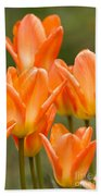 Orange Tulips Bath Towel