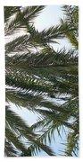 Palm Trees Bath Towel