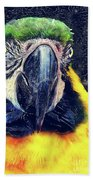 Parrot Art  Bath Towel