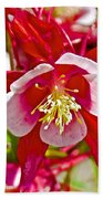 Red And White Columbine At Pilgrim Place In Claremont-california  Bath Towel