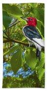 Red-headed Woodpecker Bath Towel