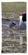 Red Knobbed Coot Bath Towel