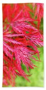 Red Maple Leaves Bath Towel