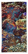 Red Sea Turtle Bath Towel