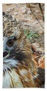 Red-tailed Hawk -5 Bath Towel