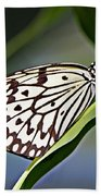 Rice Paper Butterfly 8 Bath Towel