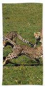 Ring Around The Cheetahs Hand Towel