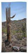 Saguaro Skeleton Bath Towel